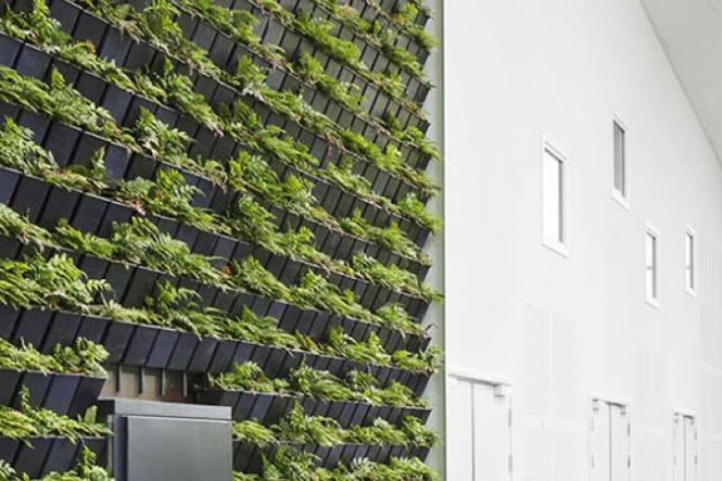Saint-Gobain stöder World Green Building Week